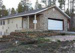 Leadville 80461 CO Property Details