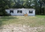 Foreclosed Home in Bascom 32423 5555 KLONDIKE RD - Property ID: 3257401