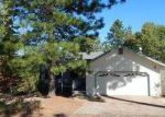 Foreclosed Home in Pine Grove 95665 17605 TANYARD HL W - Property ID: 3270482