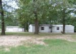 Foreclosed Home in Bethel Springs 38315 183 CHARNELL ST - Property ID: 3349031