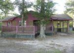 Foreclosed Home in Hemingway 29554 1690 JERUSALEM DR - Property ID: 3363153