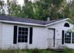Foreclosed Home in Ludington 49431 3650 HOPKINS LAKE DR - Property ID: 3385104