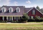 Foreclosed Home in Marianna 32446 4675 RIVER DR - Property ID: 3411073