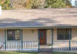 Foreclosed Home in Villa Rica 30180 895 LITTLE VINE CHURCH RD - Property ID: 3444553