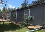 Foreclosed Home in Woodland Park 80863 550 BRIDLE DR - Property ID: 3459976