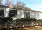 Foreclosed Home in Riverview 33569 10022 KING OAK DR - Property ID: 3501467