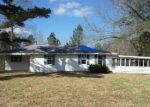Foreclosed Home in Buchanan 30113 3392 POPLAR SPRINGS RD - Property ID: 3574609