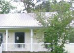 Foreclosed Home in Whitakers 27891 79 CORNERSTONE LN - Property ID: 3670177