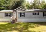 Foreclosed Home in Morriston 32668 21270 SE 73RD PL - Property ID: 3718311