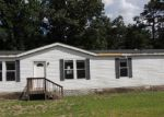 Foreclosed Home in Macon 31217 396 E VIRGINIA LN - Property ID: 3718381