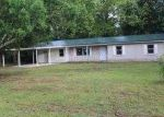 Foreclosed Home in Marianna 32448 1971 HOPE SCHOOL DR - Property ID: 3728698