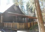 Foreclosed Home in Forestport 13338 1134 SOUTH RD - Property ID: 3783195