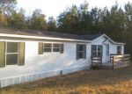 Foreclosed Home in Middleburg 32068 217 HORSETAIL AVE - Property ID: 3805018