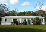 Foreclosed Home in Riverview 33579 12114 ENTRANCE WAY - Property ID: 3866144