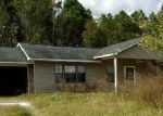 Foreclosed Home in Waycross 31503 2260 TERNEST RD - Property ID: 3916696