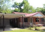 Foreclosed Home in Cottondale 32431 2542 NORTH RD - Property ID: 3973818