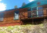 Foreclosed Home in Woodland Park 80863 1231 COUNTY ROAD 782 - Property ID: 3974841