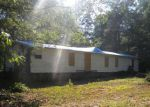 Foreclosed Home in Pelzer 29669 2 DEER FOREST LN - Property ID: 4007180