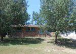 Foreclosed Home in Ozark 36360 252 DEL RIO TER - Property ID: 4044155