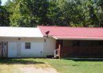 Savannah 38372 TN Property Details