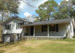 Foreclosed Home in Horton 35980 1049 MOUNT SINAI RD - Property ID: 4058000