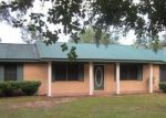 Foreclosed Home in Cottondale 32431 3176 PARRISH ST - Property ID: 4075431