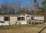 Foreclosed Home in Summerville 29483 124 GRANDE BELLE LN - Property ID: 4102711