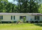 Foreclosed Home in Marianna 32448 2876 BORDEN ST - Property ID: 4107188