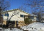 Amery 54001 WI Property Details