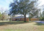 Foreclosed Home in Middleburg 32068 3570 SOUTHERN PINES DR - Property ID: 4121273