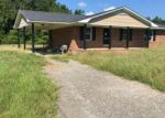 in Effingham 29541 5319 CALLIE YOUNG RD - Property ID: 70116092