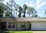 Foreclosed Home in Palm Coast 32164 18 LLEBERRY PATH - Property ID: 4037683