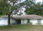 Foreclosed Home in Palm Coast 32164 55 PERROTTI LN - Property ID: 4042144