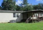 Foreclosed Home in Middleburg 32068 1657 LONG HORN RD - Property ID: 4193710