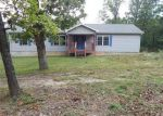 Foreclosed Home in Plato 65552 16993 WOODCREST LN - Property ID: 4214878