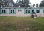 Foreclosed Home in Middleburg 32068 2371 DAISY ST - Property ID: 4218028