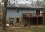 Foreclosed Home in Plato 65552 14300 DAISY DR - Property ID: 4251307