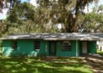 Foreclosed Home in Osteen 32764 208 3RD ST - Property ID: 4297717