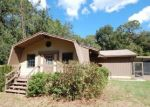 Foreclosed Home in Ocklawaha 32179 5811 SE 169TH CT - Property ID: 4311470