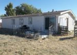 Foreclosed Home in Lovelock 89419 665 N MERIDIAN RD - Property ID: 4313582