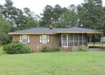 Foreclosed Home in Red Springs 28377 4204 DANIEL MCLEOD RD - Property ID: 4313663