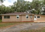 Foreclosed Home in Webster 33597 13014 SE 48TH TER - Property ID: 4314966