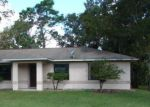 Foreclosed Home in Ocala 34472 54 PECAN DRIVE PASS - Property ID: 4318784